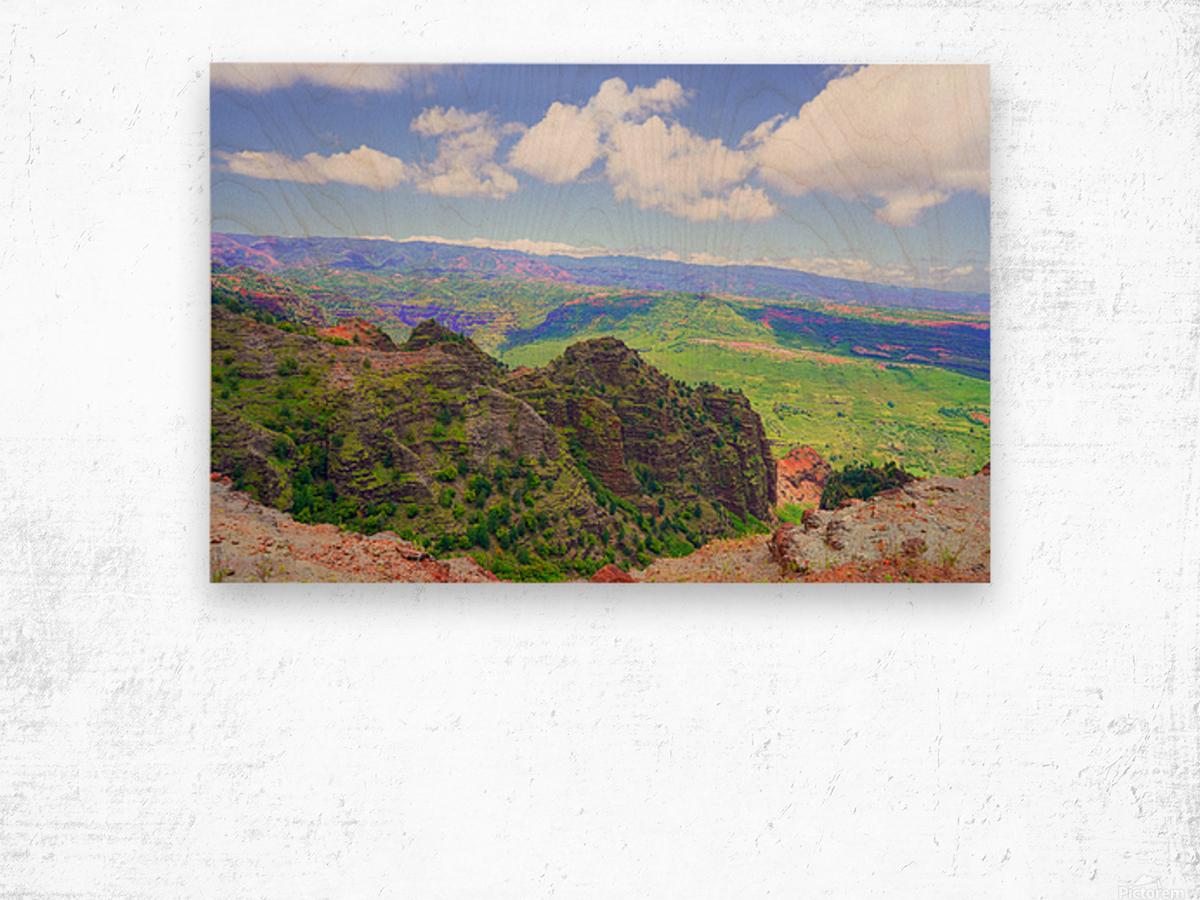 Waimea Canyon Area in the Puu Ka Pele Forest Reserve on the Island of Kauai Hawaii Wood print