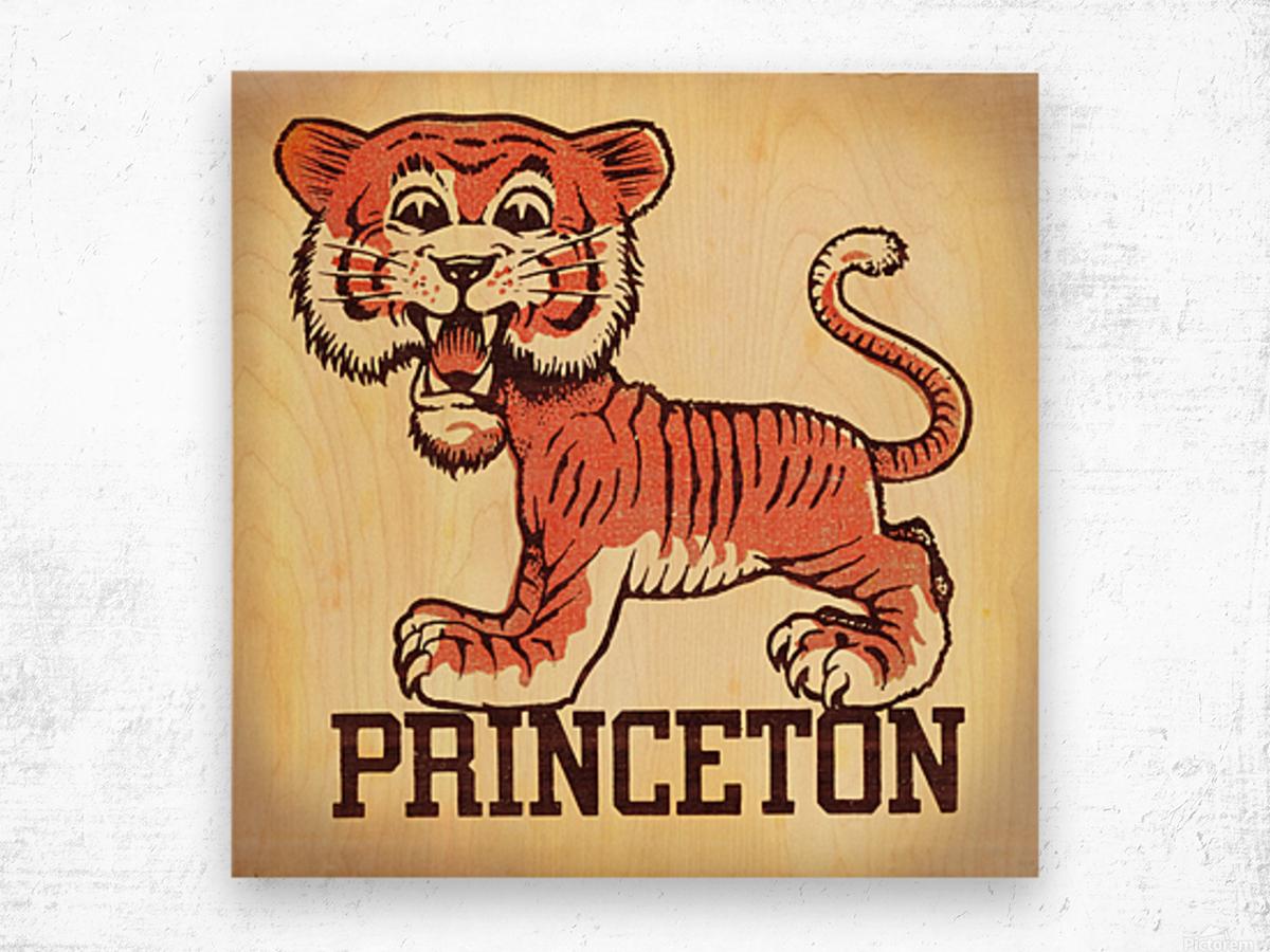 Vintage Fifties Princeton Tiger Remix Art Wood print