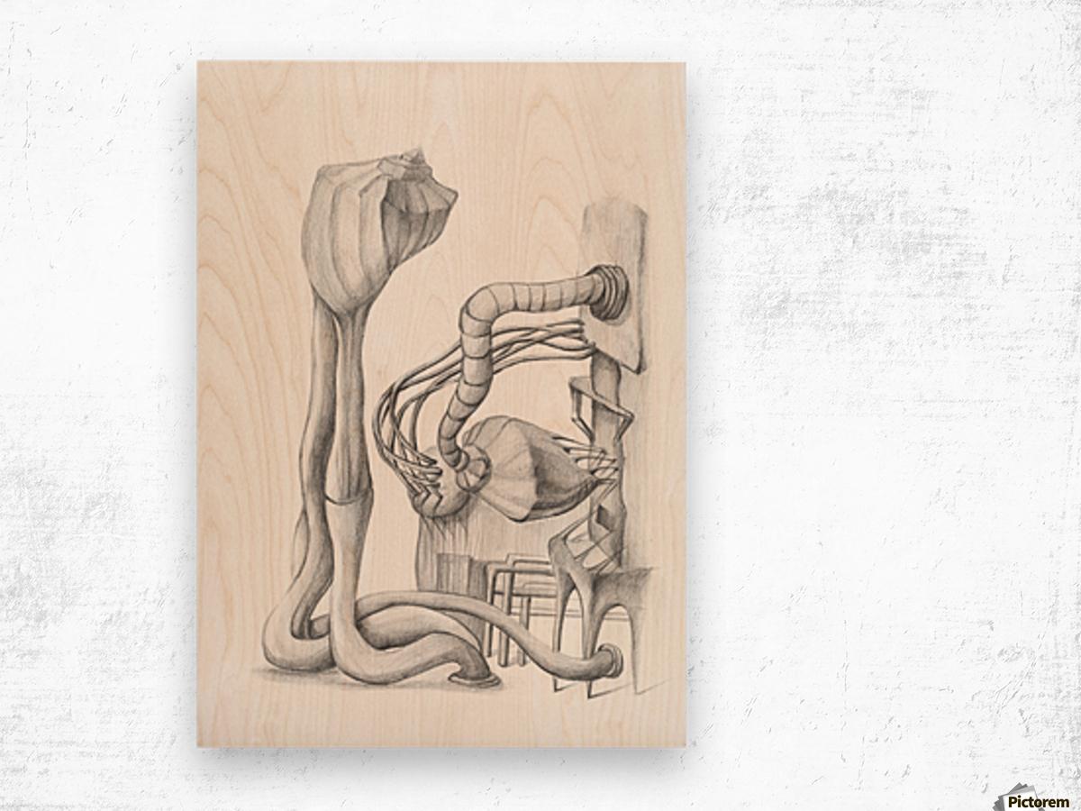 TRANSFORM Wood print