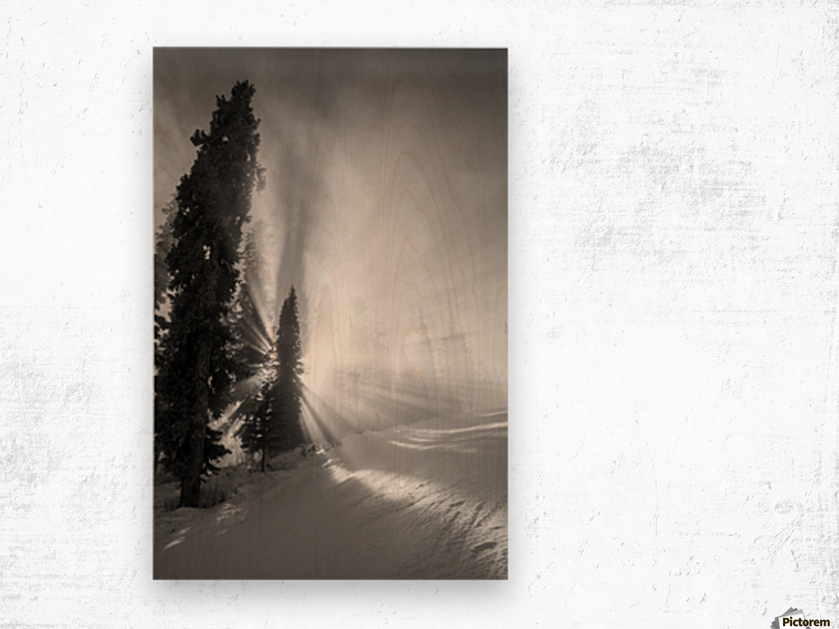 Frozen mist Wood print