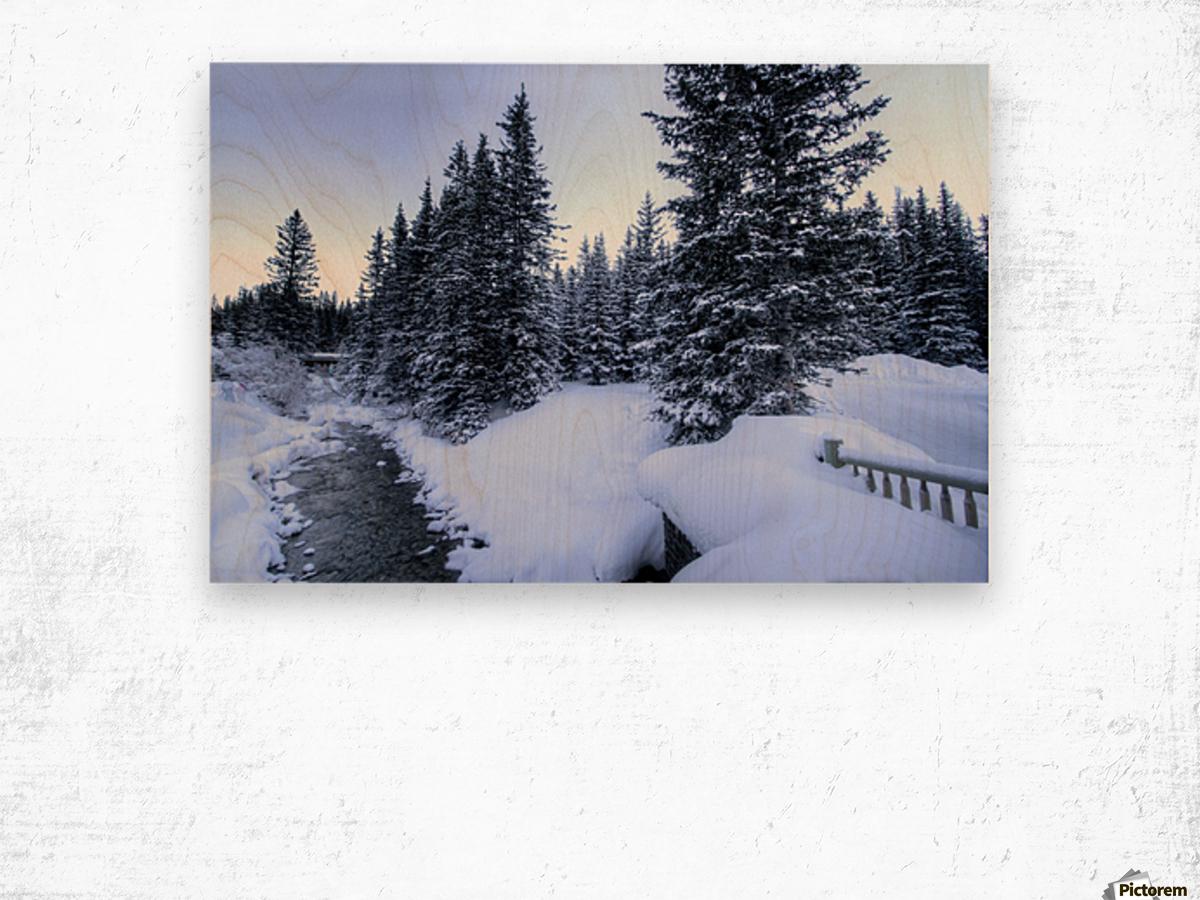 Snowy crossing Wood print