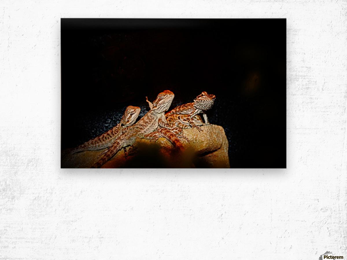 Reptile movie Stars Wood print