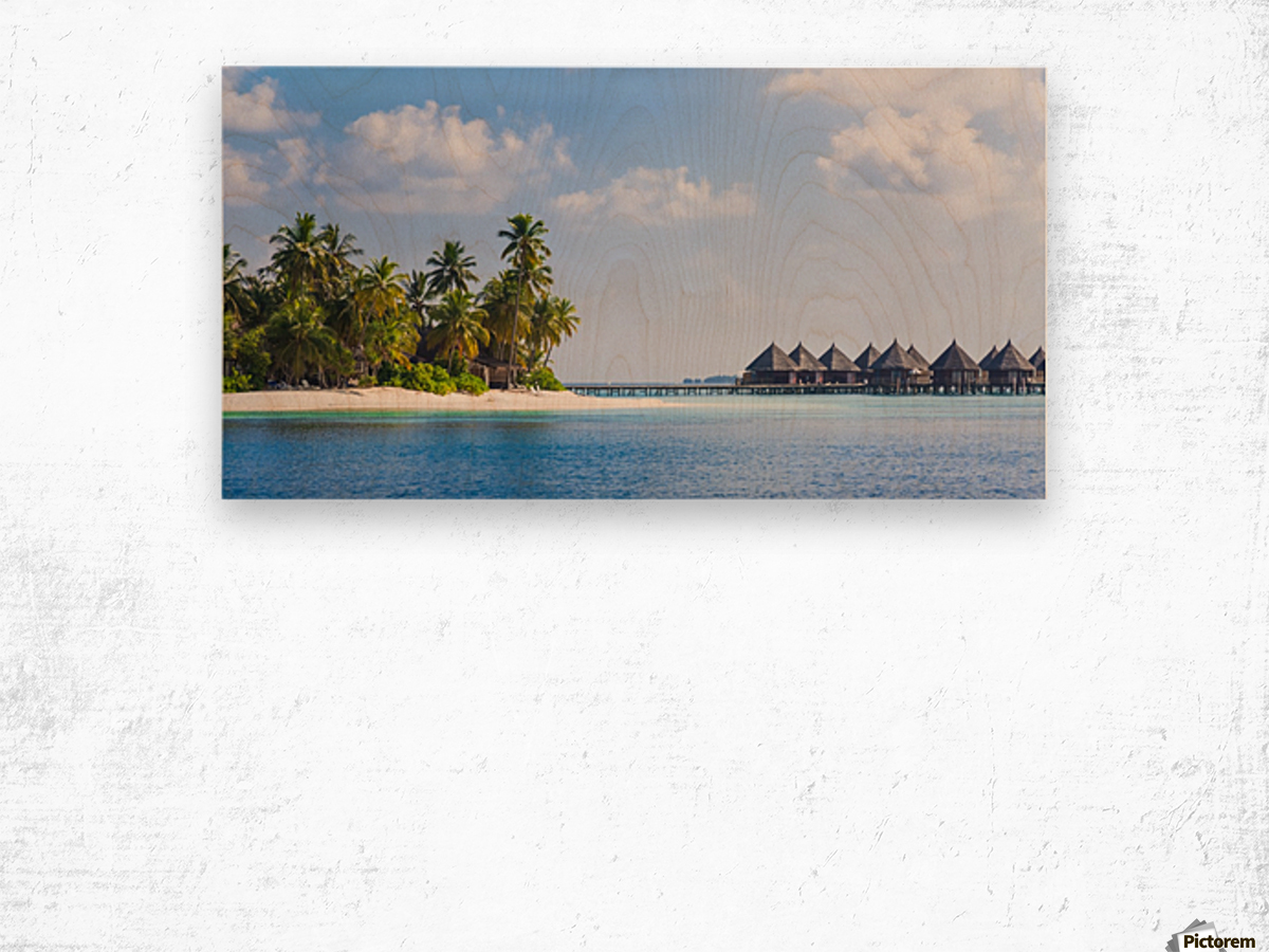 Amazing beach in Maldives, summer travel Wood print