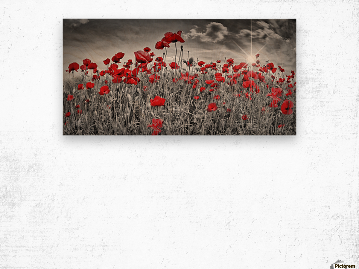 Idyllic Field of Poppies with Sun Wood print