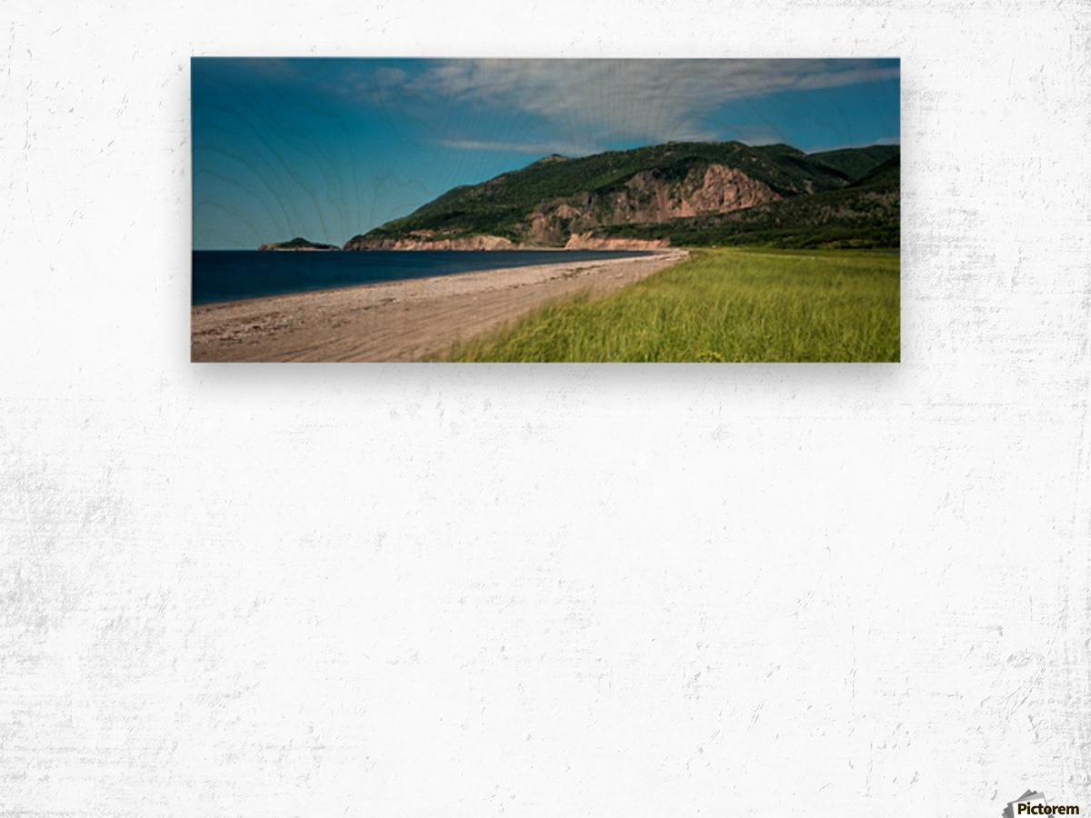 Petit Etang Beach Memories Wood print