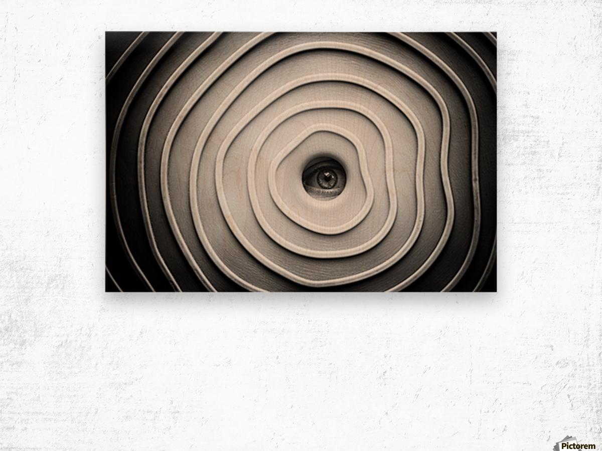 Little Spy Wood print