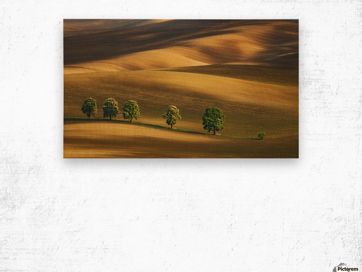 Six... Wood print