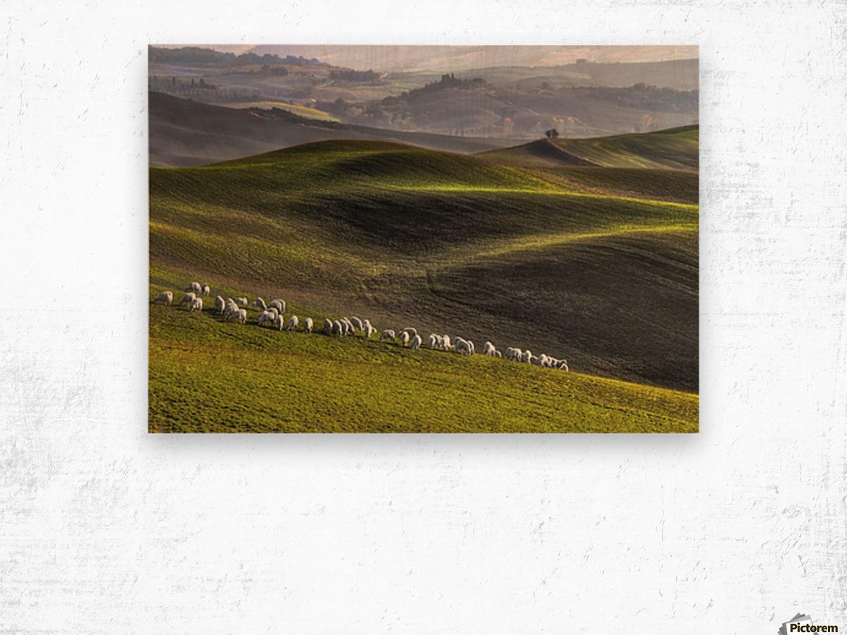 pastoral Wood print