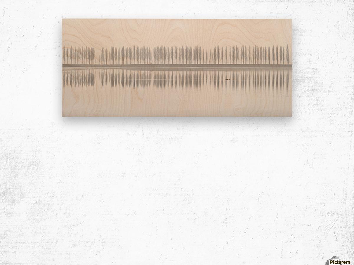 misty alley Wood print