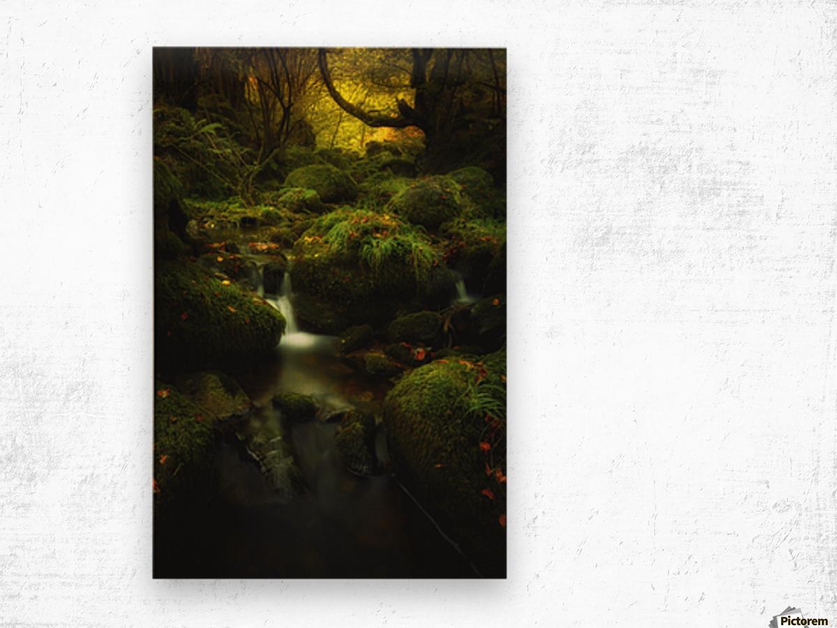 Land of Xanes Wood print