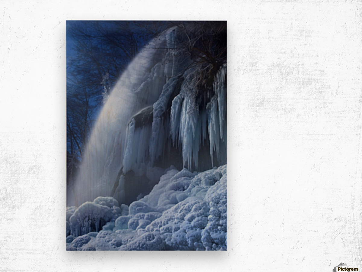 Frozen in the moonlight Wood print
