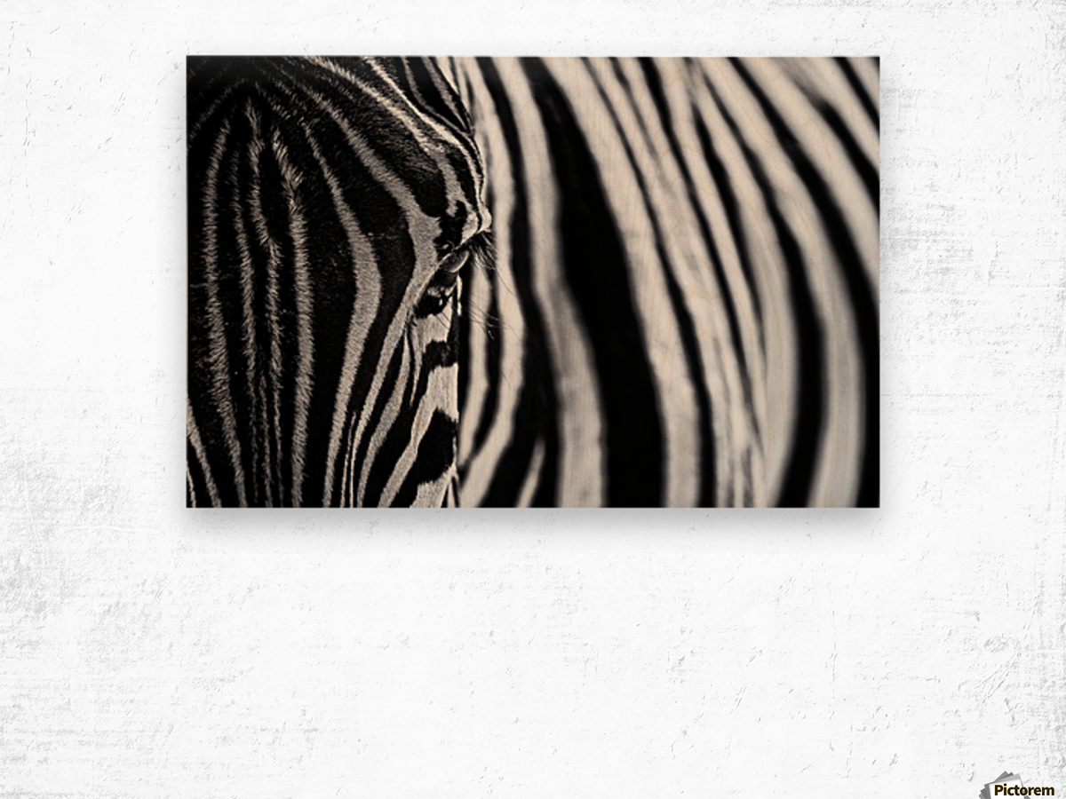 The look of nature Wood print