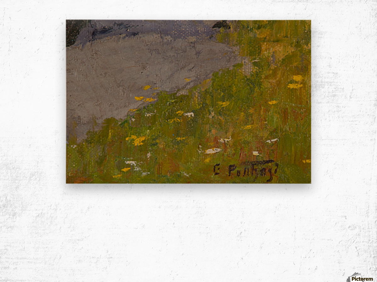 Rocky fields Wood print