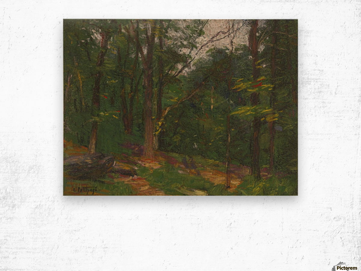 Forest in the spring Wood print