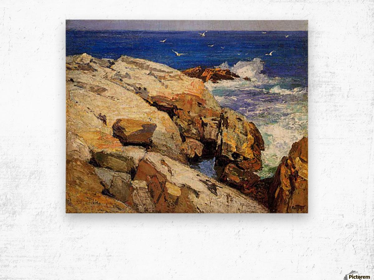The Maine Coast Wood print
