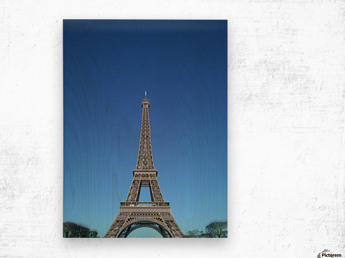 Eiffel tower Paris black and white with color Wood print