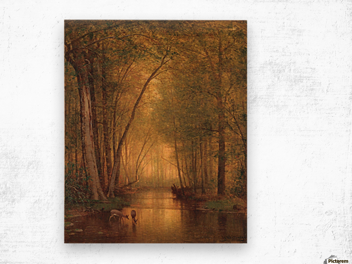 Forest Landscape Wood print