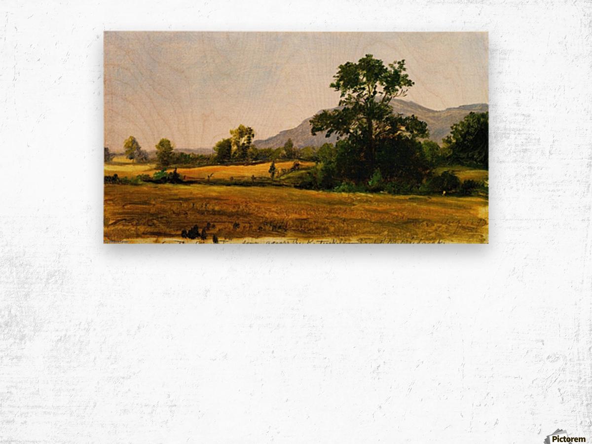 Catskills Wood print