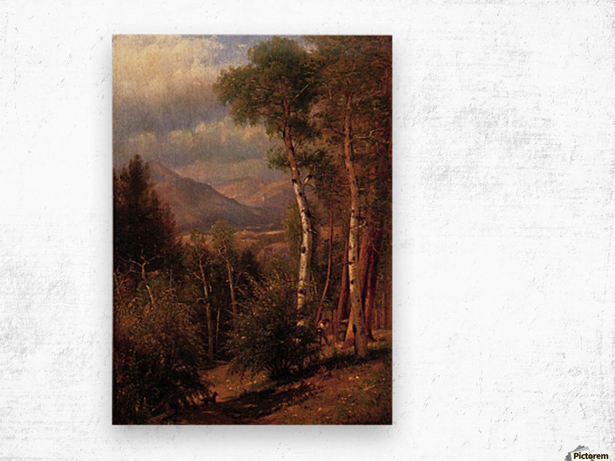 Hunter in the Woods of Ashokan Wood print