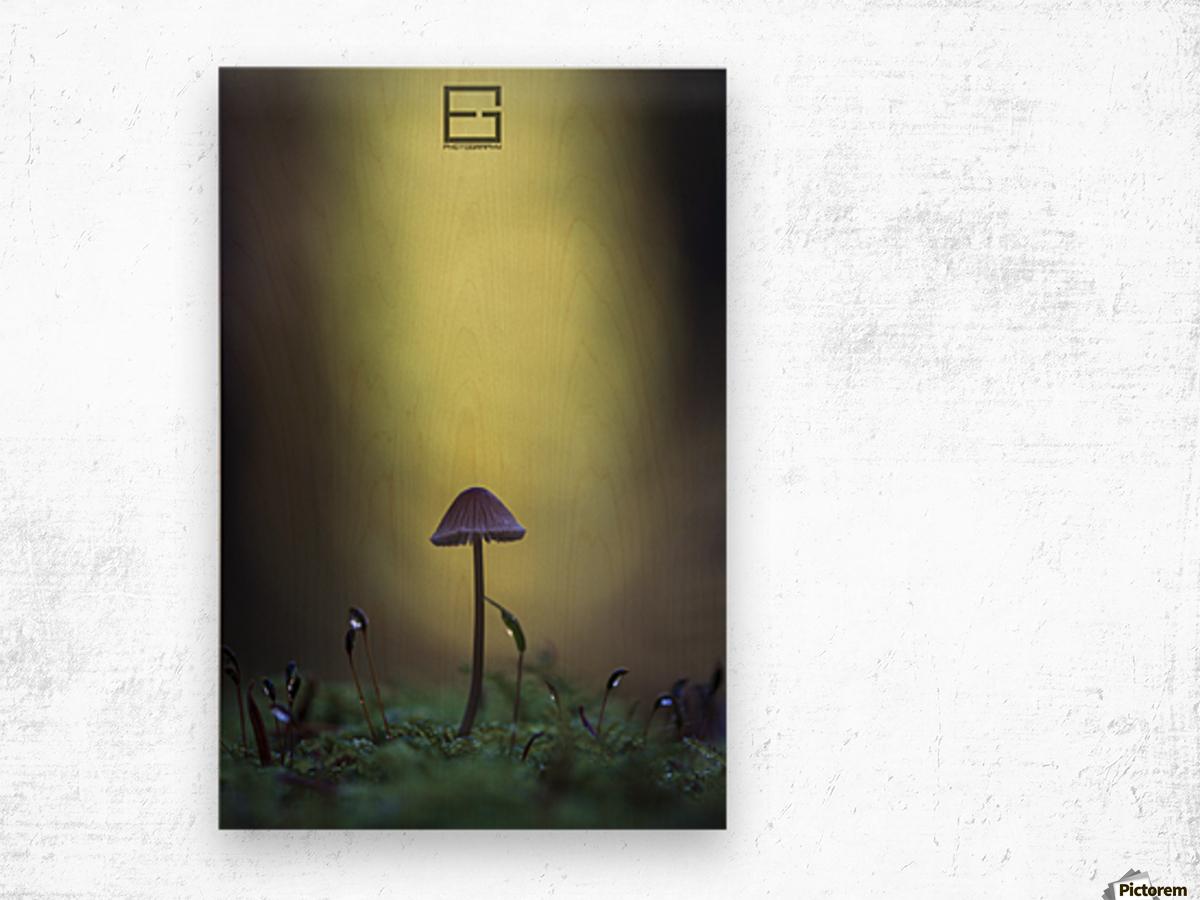 .. Wood print