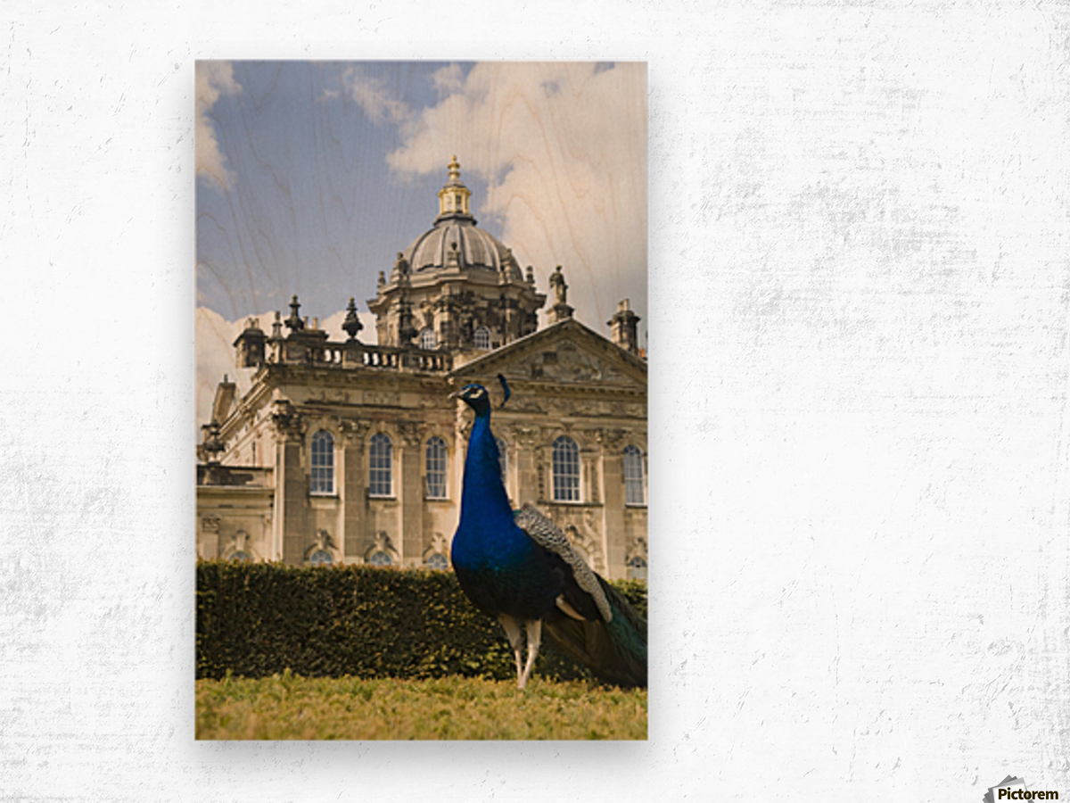 Peacock In Front Of A Building Wood print