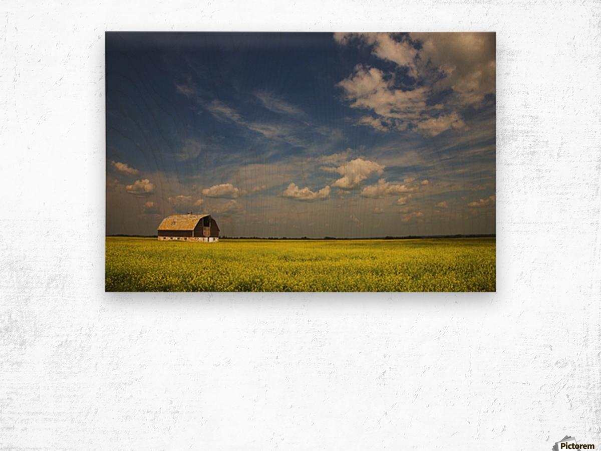 Alberta, Canada; An Old Barn In A Field Wood print