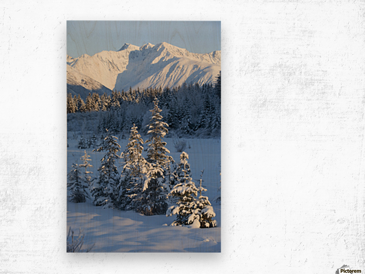 Scenic View Of Chugach Mountains And Snowcovered Landscape, Southcentral Alaska, Winter Wood print