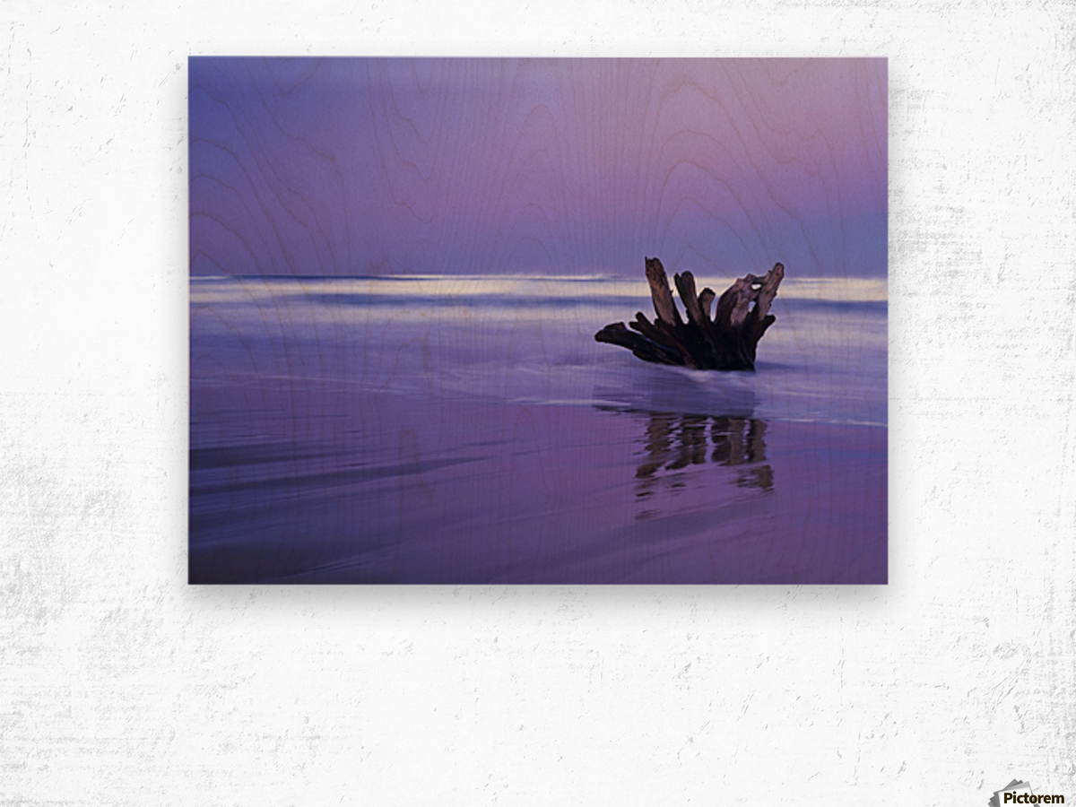 Waves break on the beach at dawn; Winchester Bay, Oregon, United States of America Wood print