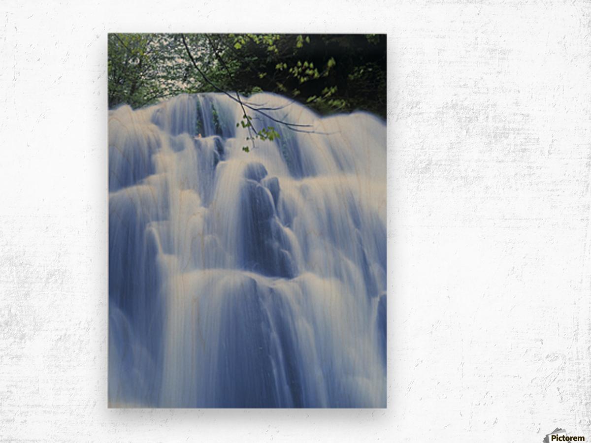 Sweet Creek waterfalls along the hiking trail; Mapleton, Oregon, United States of America Wood print