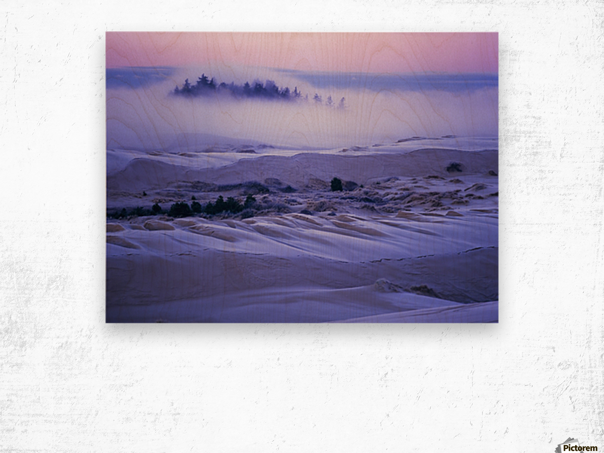 Fog over the sand dunes at dawn after a heavy frost; Lakeside, Oregon, United States of America Wood print