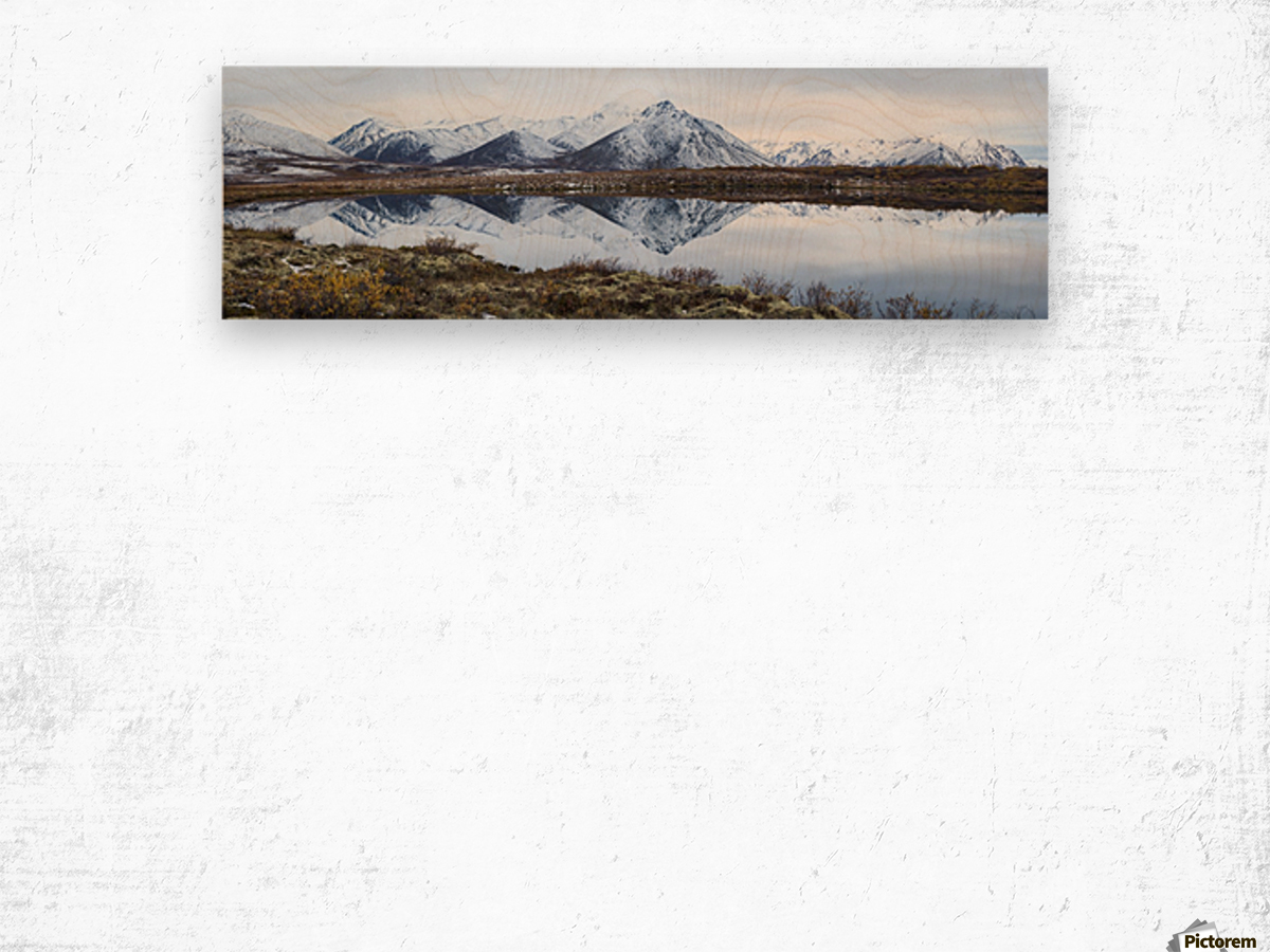 Mount Adney reflected in a pond along the Dempster Highway in the northern Yukon; Yukon, Canada Wood print