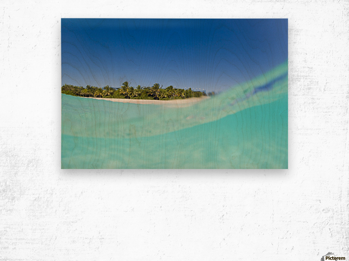 Tropical Island, Blue Sky and Beautiful Ocean Wood print