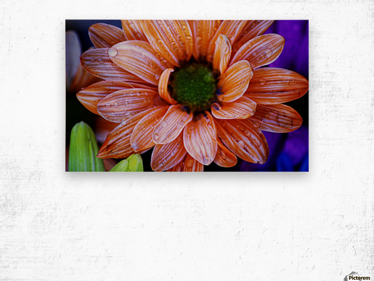 FPS-0058 Wood print
