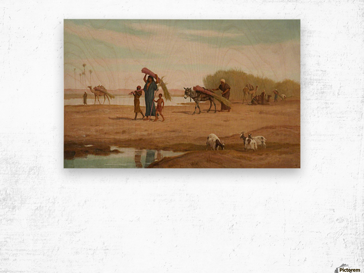 Getting in the Sugar Cane, River Nile Wood print