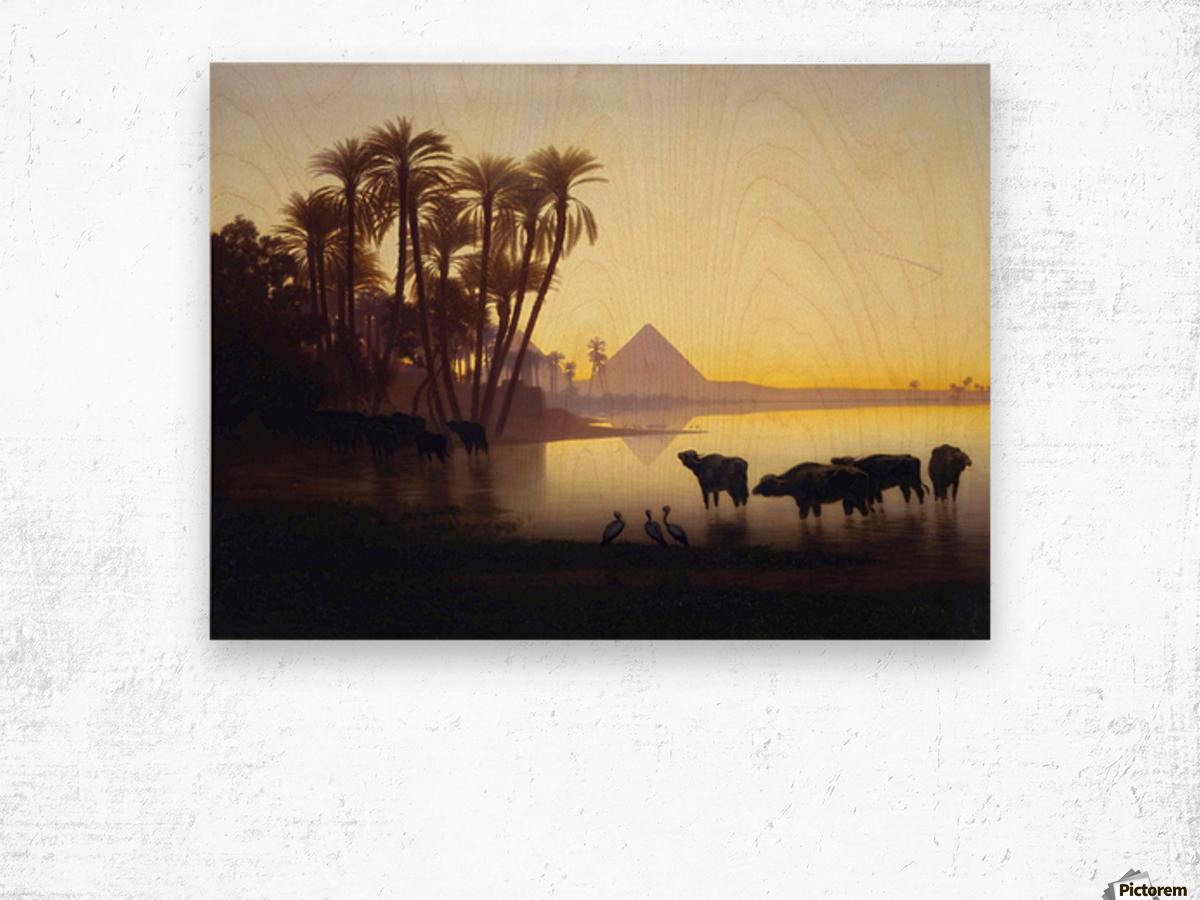 Along the Nile at Giza Wood print