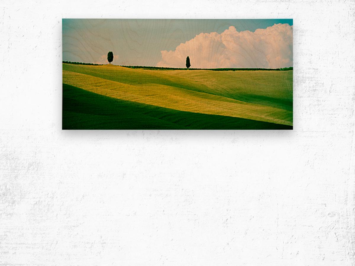 Tuscany Curves Wood print
