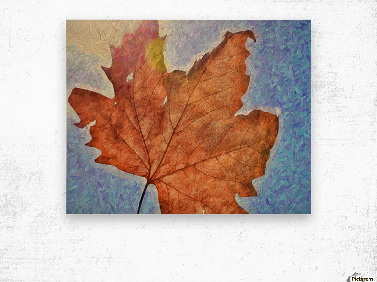 Autumn Leaves Macro 3 Abstract 3 Wood print
