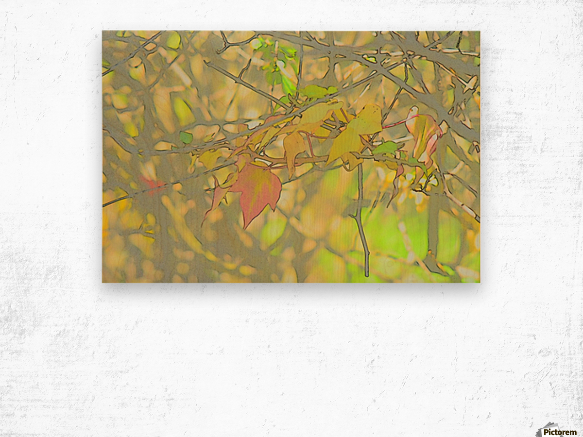 Leaves Macro 5 Abstract 1 Wood print