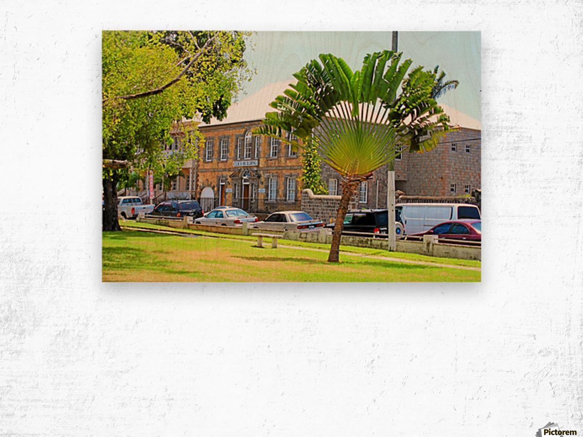 St Kitts Independence Square 3 Wood print